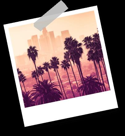 California Los Angeles