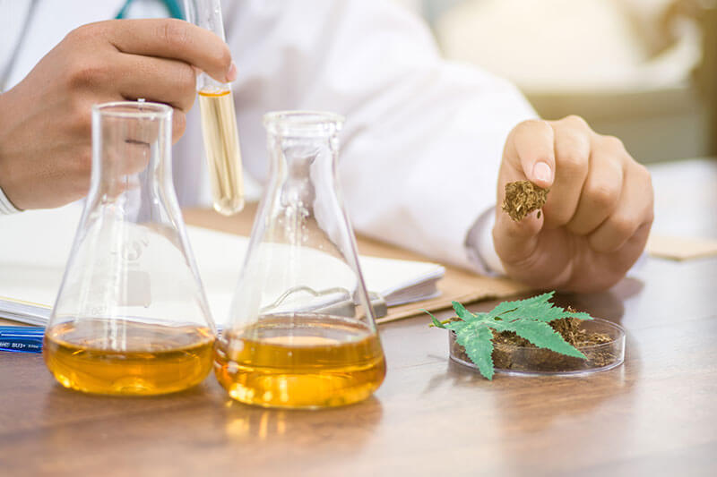 difference between medicinal and recreational cannabis chemical components