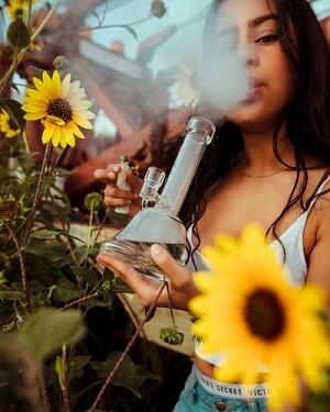 smoking bong
